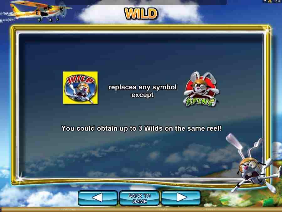 Jumpin Rabbit Wild Bonus Feature