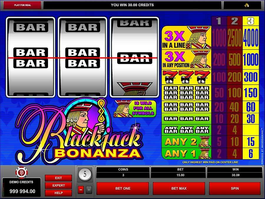 Blackjack Bonanza Screenshot