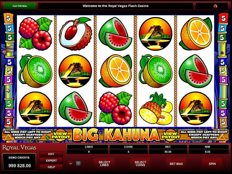 Big Kahuna Screenshot