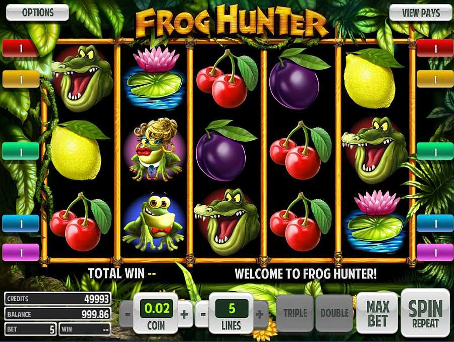 Frog Hunter Screenshot