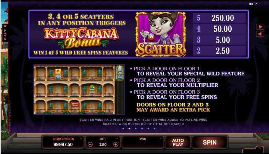Kitty Cabana Bonus Feature