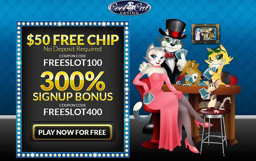 Cool Cat No Deposit Bonus: FREESLOT100
