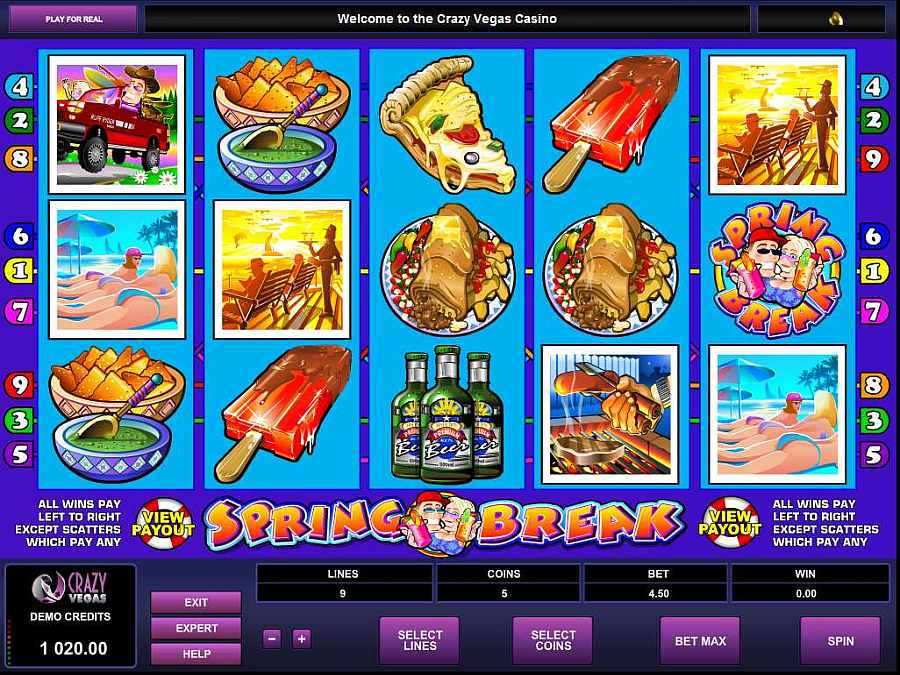 Spring Break Main Slot Screenshot