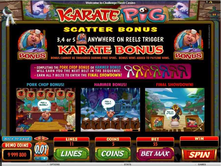 Scatter Bonus Feature
