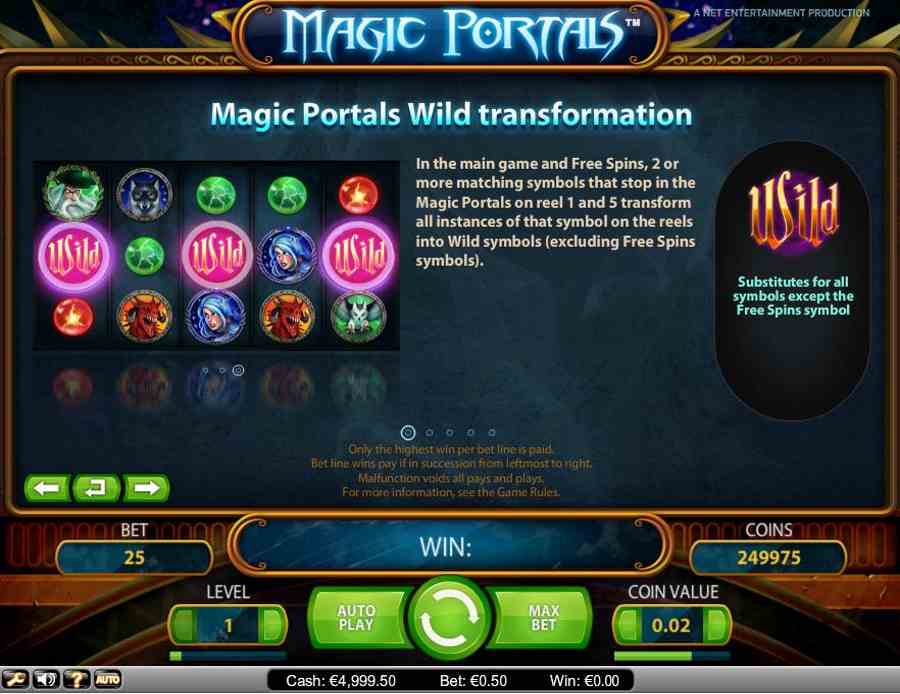Wild Transformation Feature