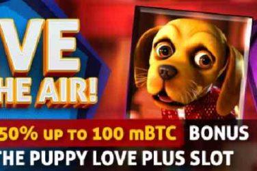 Bit Casino Puppy Love Plus Bonus Codes