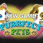 Intertops Purrfect Pets Bonus Code PURRFECT