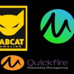 Play Rabcat Slots at Microgaming Casinos