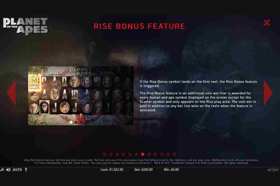 Rise Bonus Feature