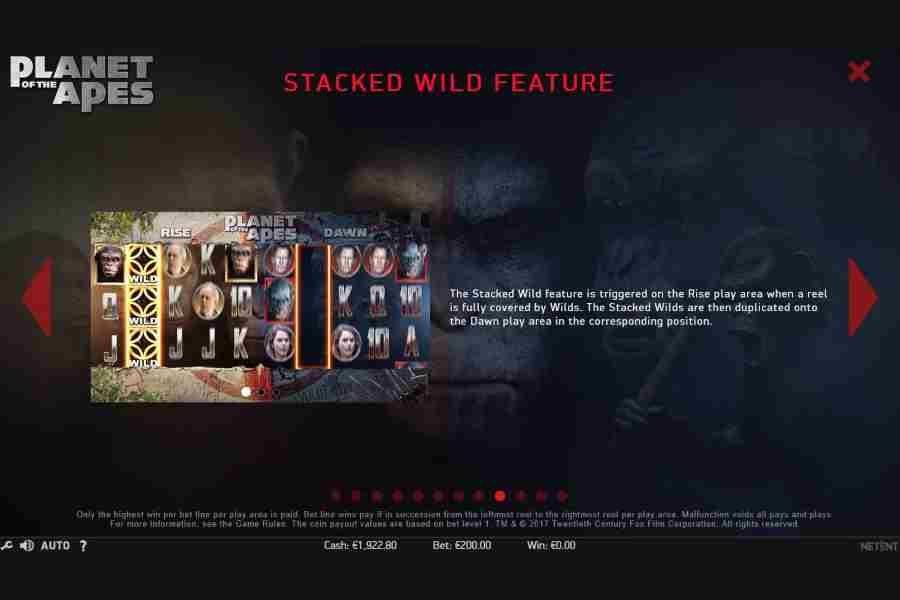 Stacked Wild Feature