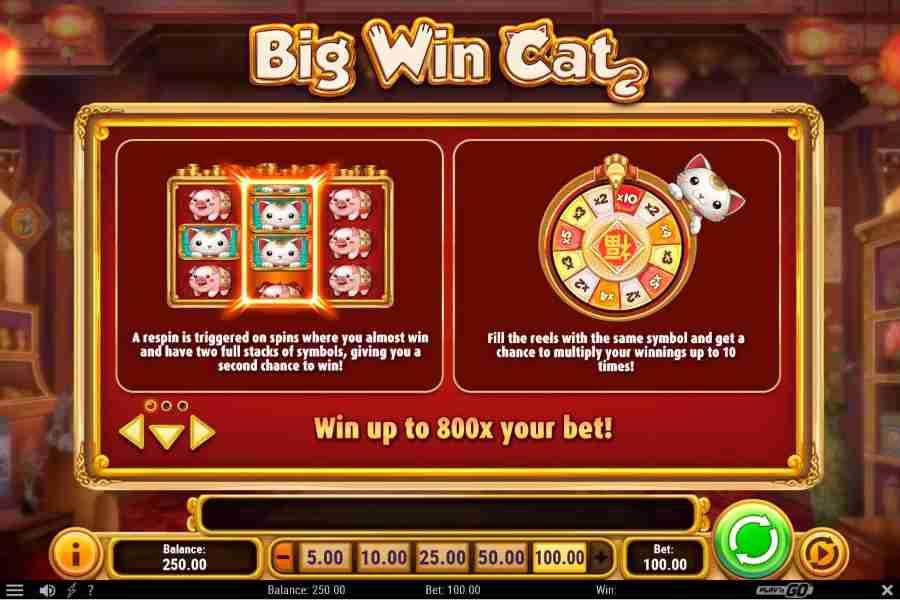 Respin Bonus 800x your bet Screenshot