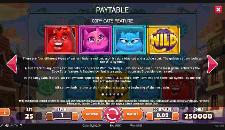 Copy Cats Feature