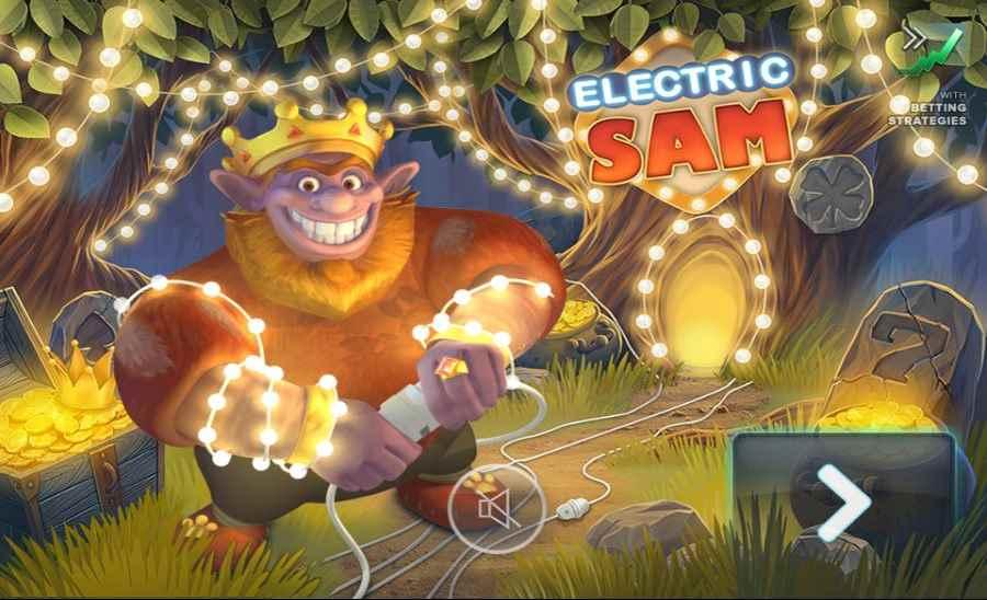 Electric Sam Screen