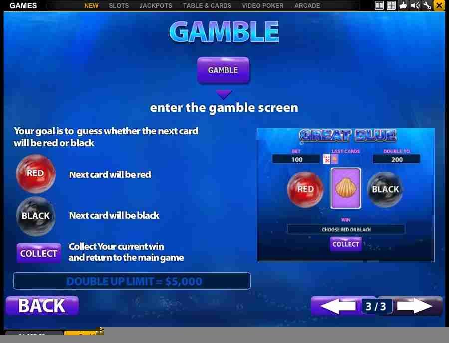 Bonus Gamble Screen