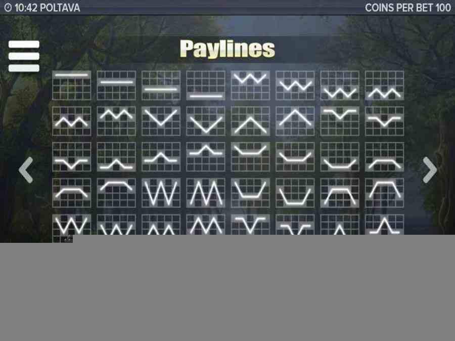 Poltava Paylines