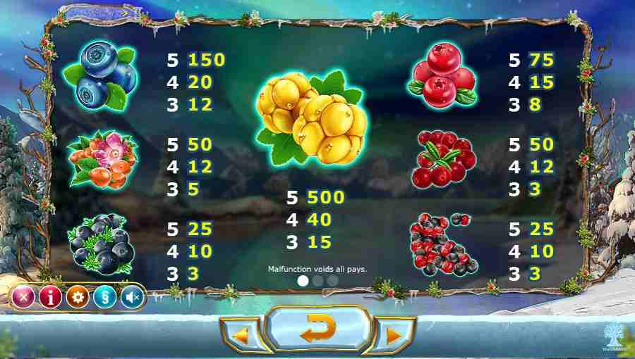 Winter Berries Symbols Paytable
